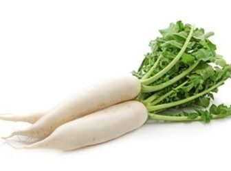 Radish.Online grocery. Cheapest and the freshest vegetables. Next-day delivery within Klang Valley for RM5 only.