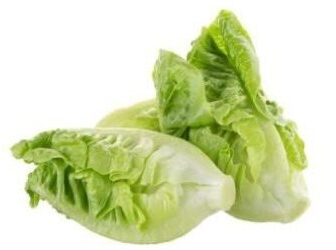 Romaine .Online grocery. Cheapest and the freshest vegetables. Next-day delivery within Klang Valley for RM5 only.